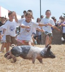 Youth fair kids chasing greased pig cropped