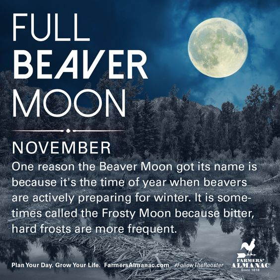 Interesting Full Moon Facts For 2018 Massac Beeswax